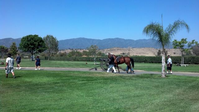Wyatt Our Sweet Rescue Oak Meadows Ranch Wildomar