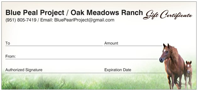 oak meadows ranch gift certificate oak meadows ranch wildomar california. Black Bedroom Furniture Sets. Home Design Ideas